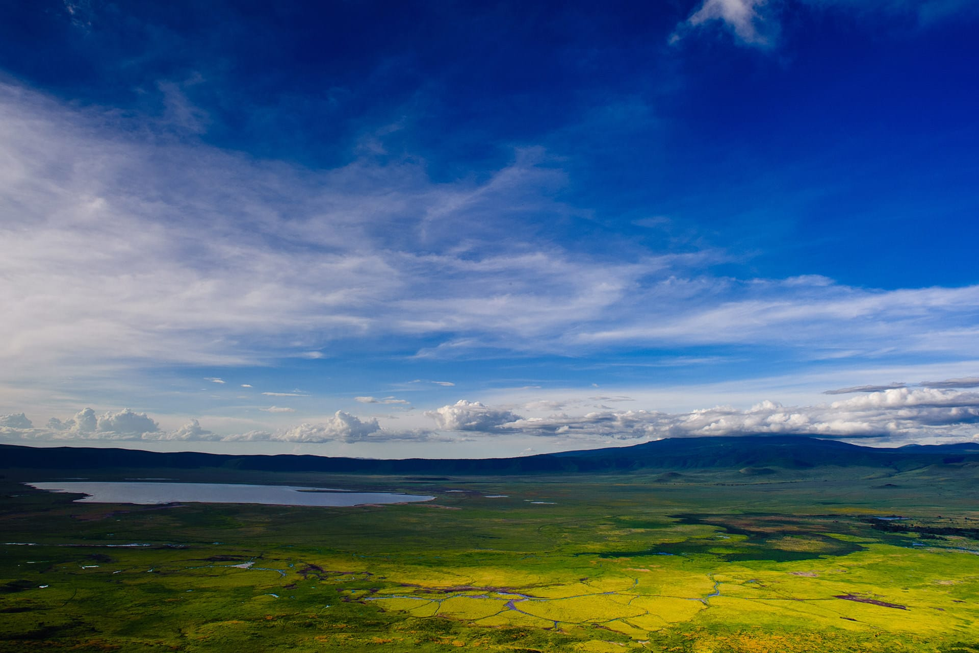 Adumu Safaris - Ngorongoro National Park
