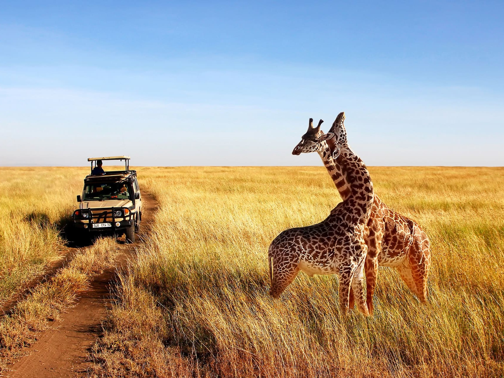 Adumu Safaris - Serengeti National Park