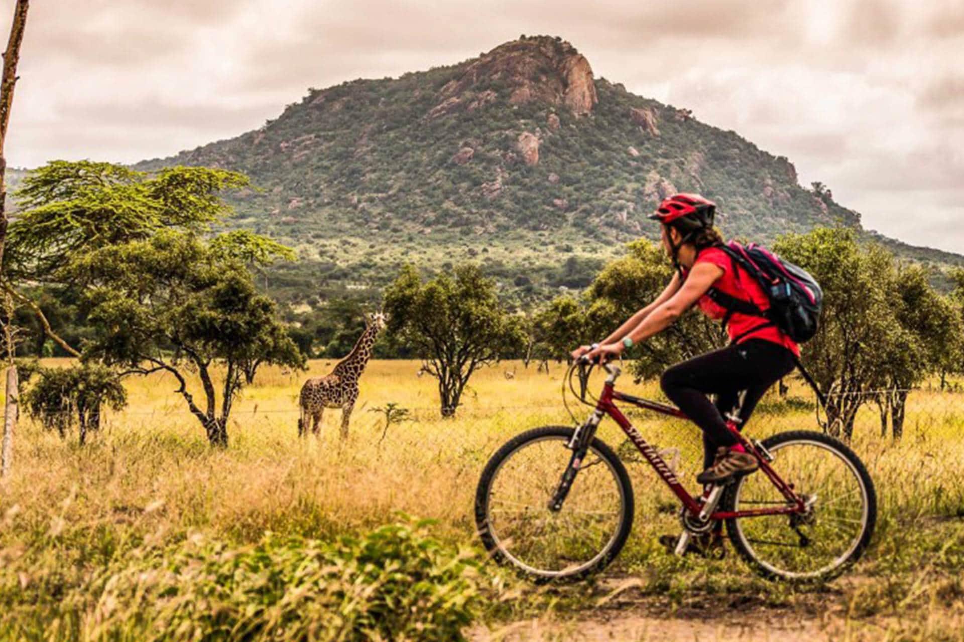 Adumu Safaris Activities - Biking Safaris