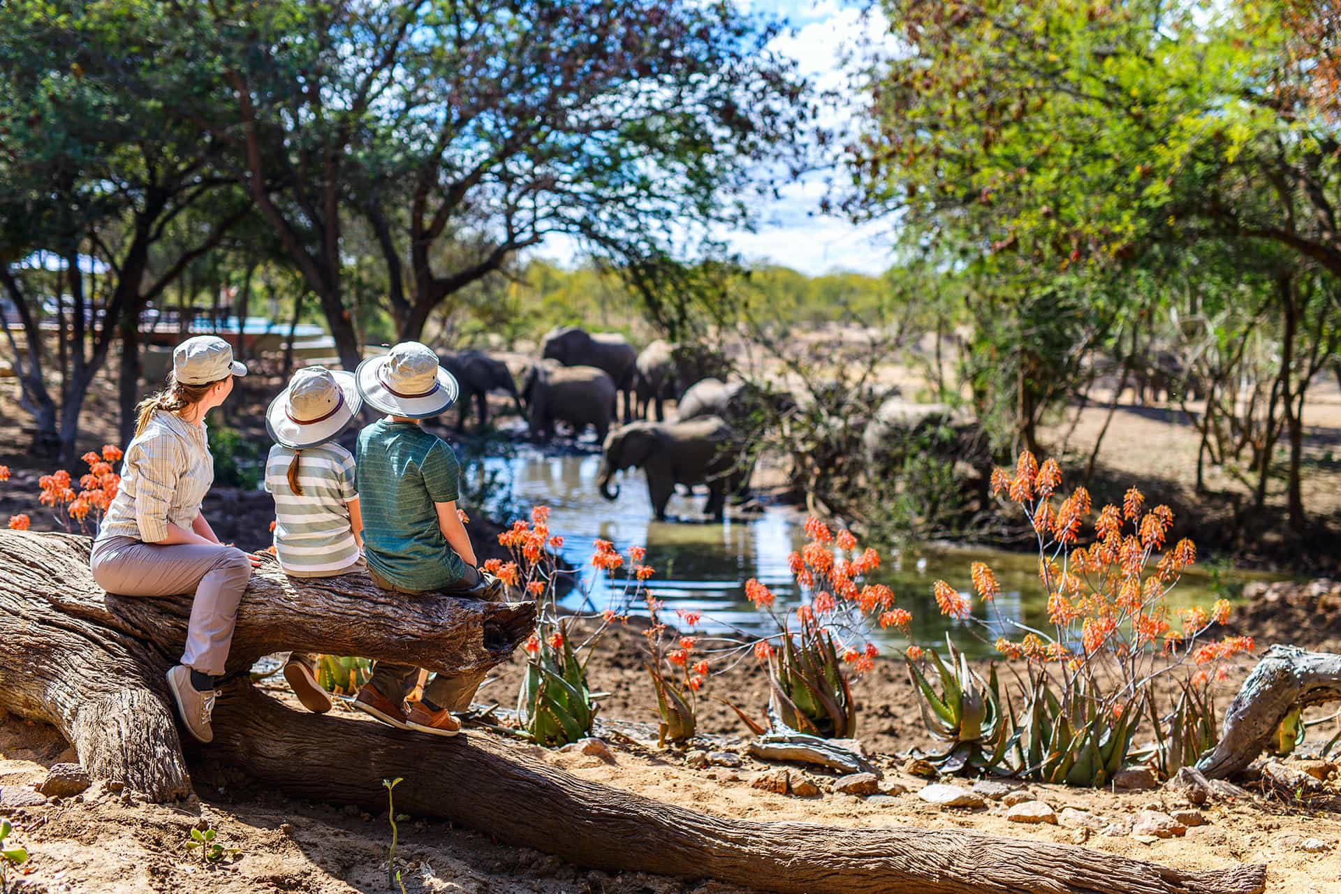 Adumu Safaris Activities - Family Safaris