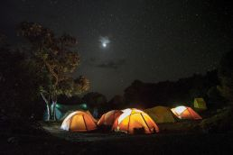Adumu Safaris - Kilimanjaro