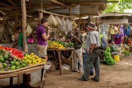 a tourist browses produce at a local Tanzanian market